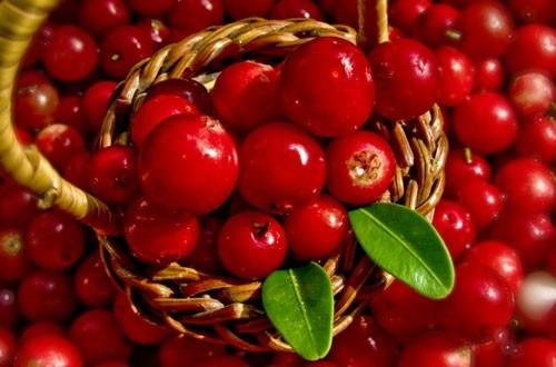 Os 10 superalimentos que você deve incluir em sua alimentação e a novidade: Lingonberry