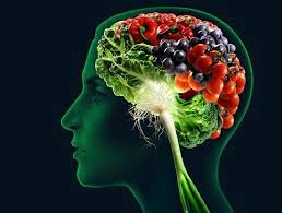 Veja os alimentos que ajudam seu Sistema Nervoso na esclerose múltipla, ansiedade e enxaqueca