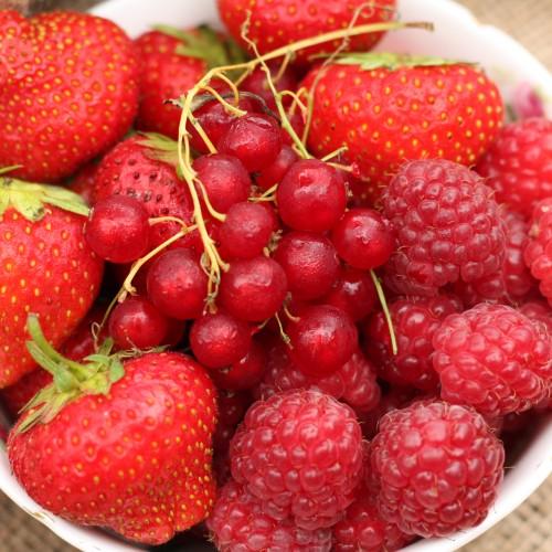 O que comer para controlar inflamações?