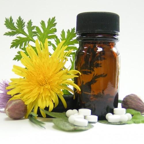 Conheça 8 suplementos naturais para sua saúde
