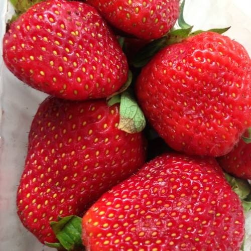 Uma das frutas mais antioxidantes: conheça o benefícios do morango