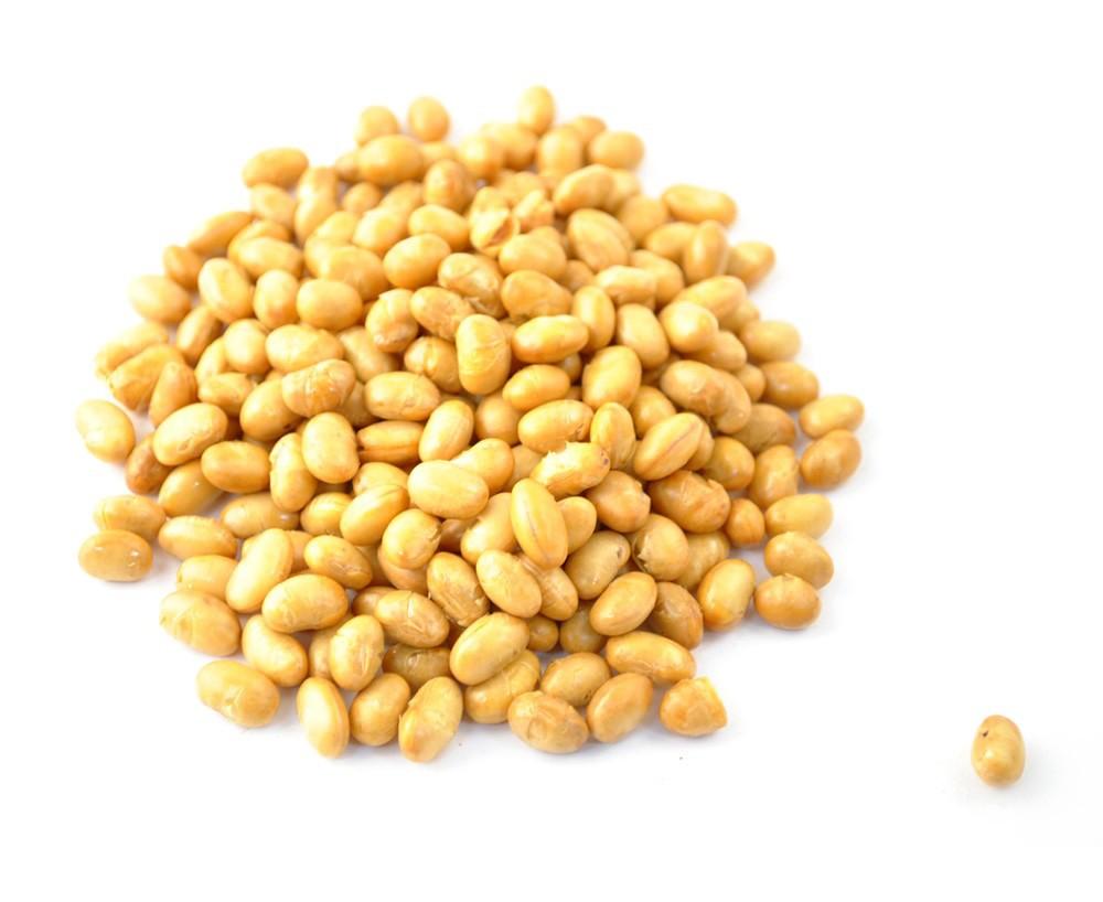 5b11531e5 Giovana Morbi » Os benefícios da proteína da soja para ganho de ...