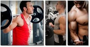 Musculação 1