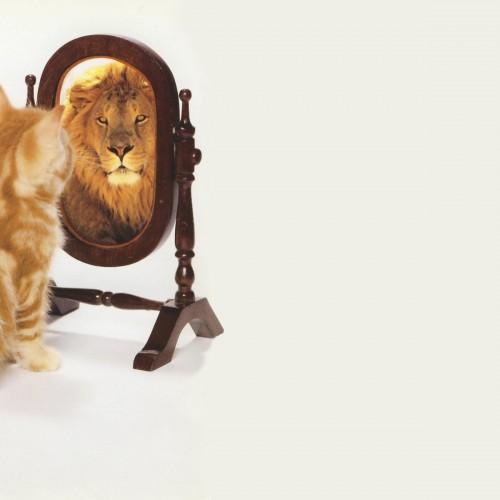 Como você se vê no espelho?