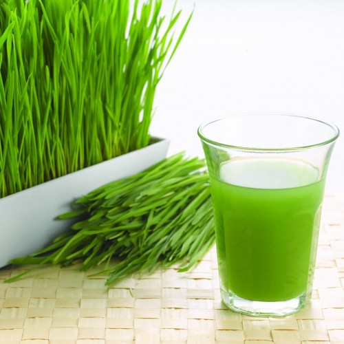 Suco de luz: aumente sua disposição com essa versão mais turbinada do suco verde